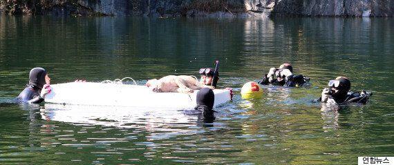 물에 빠뜨린 돼지...'사체의 비밀'