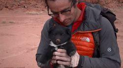 사막 탐험 도중 만난 버려진