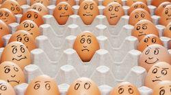 당신이 마트에서 산 '방사 유정란'은 초원에서 뛰놀던 닭이 낳은 달걀이 아닐 수도