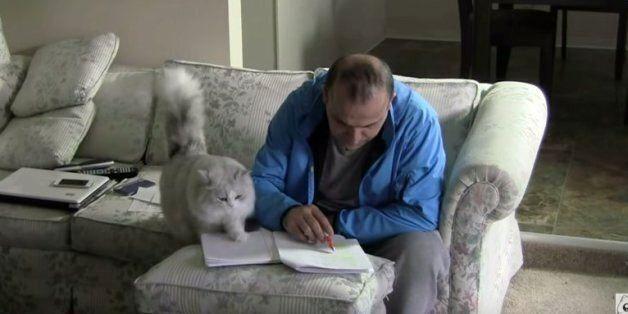 고양이는 주인을 너무나도