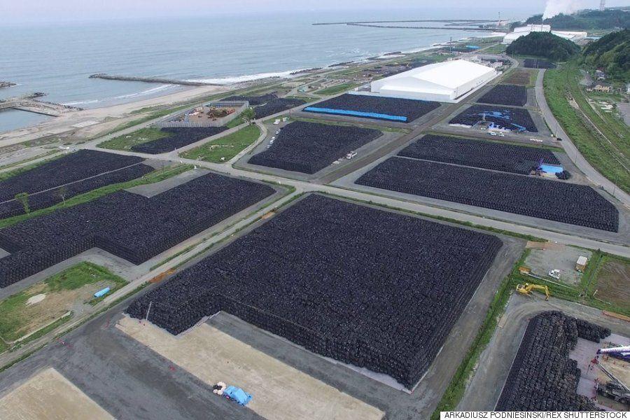 후쿠시마 재앙 이후, 그 자리에 남은