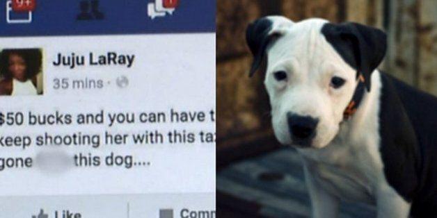페이스북에 자기 개를 죽이겠다고 협박한