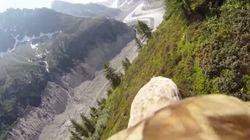 독수리가 되어 알프스 산맥을 날아다녀