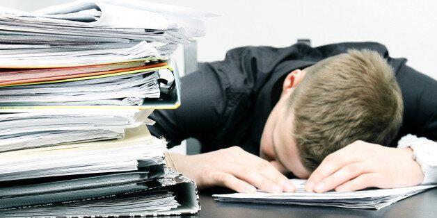 취업준비생 평균 5.2개 스펙