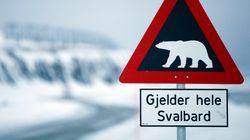 노르웨이 행 난민들은 북극곰 섬에 보내질 수도