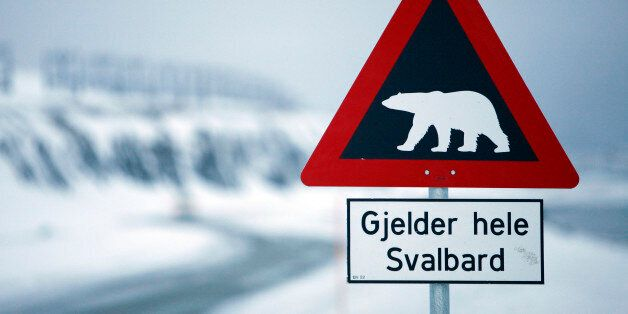A sign warning of polar bears is seen Feb. 25, 2008 outside of Longyearbyen, Norway on the Arctic archipelago...