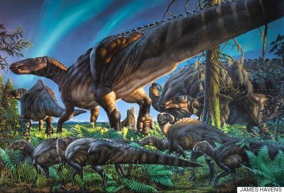 새 공룡 '우그류나럭 쿡피켄시스'가 발견됐다. 굶주린