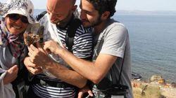 시리아 난민, 고양이와 함께 바다를 건너 그리스에