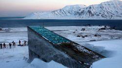 '인류 최후의 날'을 대비한 북극 씨앗 창고가 7년 만에