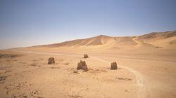 IS, 이번엔 팔미라 탑무덤