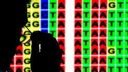 우리는 세계의 게놈을 서열하고 있다. 그리고 새로운 생명의 비전을 보고
