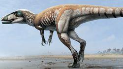 호주에서 무시무시한 '번개 발톱' 공룡이
