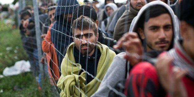 독일, 난민 폭증에 국경통제