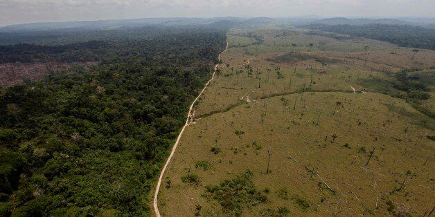 FILE - In this Sept. 15, 2009 file photo, a deforested area is seen near Novo Progresso, in Brazil's...