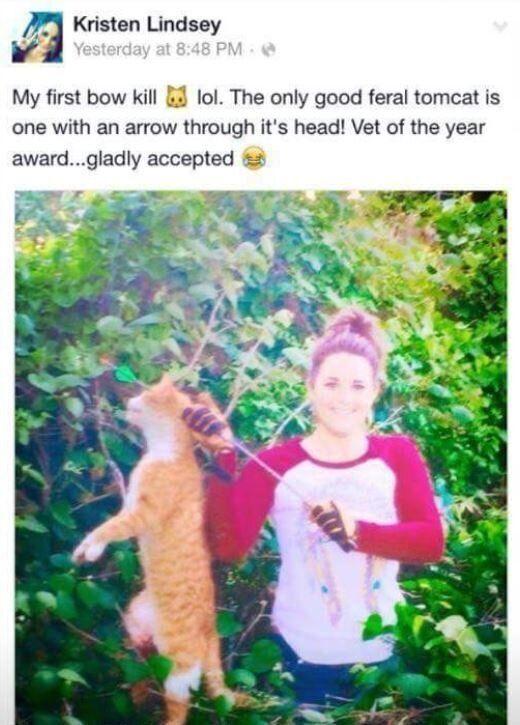 활로 고양이를 죽인 수의사, 결국 처벌
