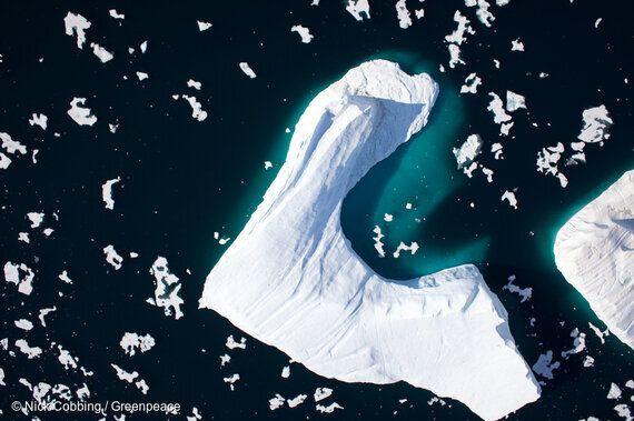 북극 빙하를 위해 진혼곡을 연주하는