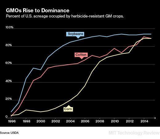 GMO 복제 작물 쏟아진다,