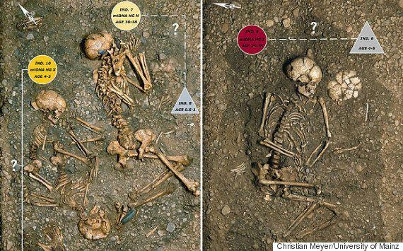 신석기 시대 유해에서 인류 최초 집단 학살의 증거를