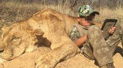 7살 소년의 첫 사자 사냥 인증을