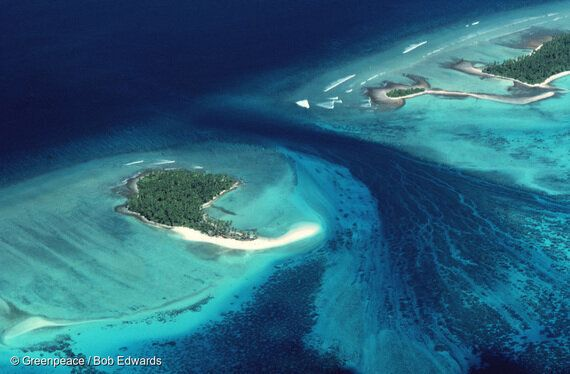 남태평양 작은 섬나라의 구조