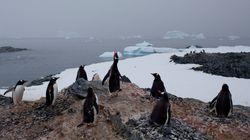 빙하가 역사상 가장 빠른 속도로 녹고