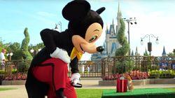 작은 햄스터가 디즈니랜드에