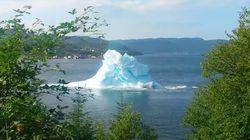 해변에 떠밀려 온 빙산은