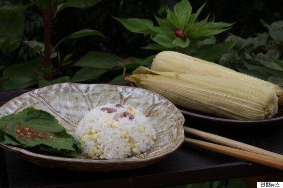 입맛 없는 당신을 위한 '옥수수밥'의 모든
