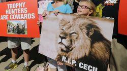 유엔 '밀렵과의 전쟁' 결의안