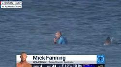 상어를 주먹으로 이긴 서핑 챔피언의