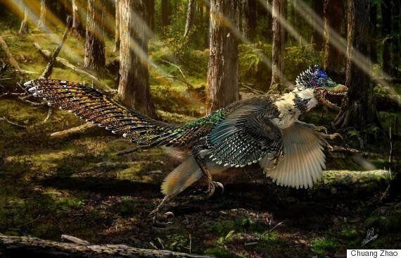 새로 발견된 공룡이 '쥬라기 월드'가 틀렸다는 사실을