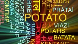 기계번역 시대의 외국어