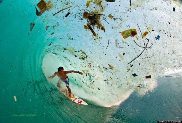 하와이 주, 미국 최초로 비닐 봉지에 안녕을