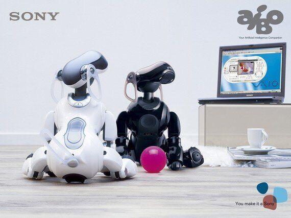 로봇의 죽음, 그 슬픔의