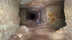 이집트 지하 무덤에서 수백만 마리 '미라 개'가