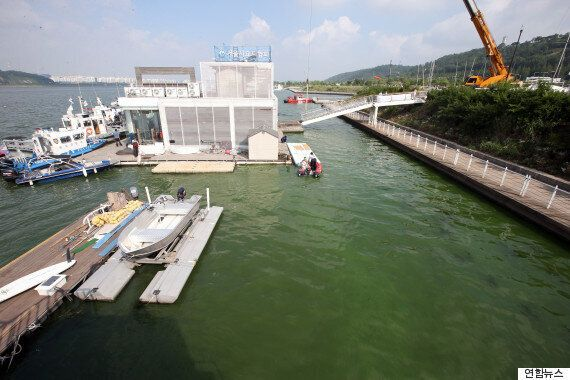 '녹조비상' 한강, 4대강 가운데 조류 증가율