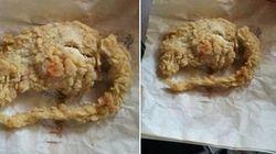 KFC의 쥐 고기 텐더는