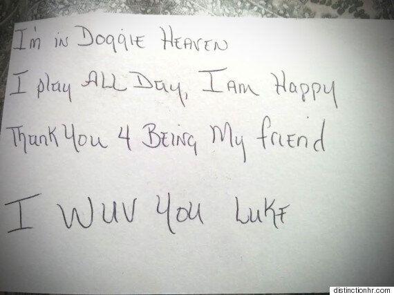 3살 아이가 죽은 개에게 쓴 편지에 답장이