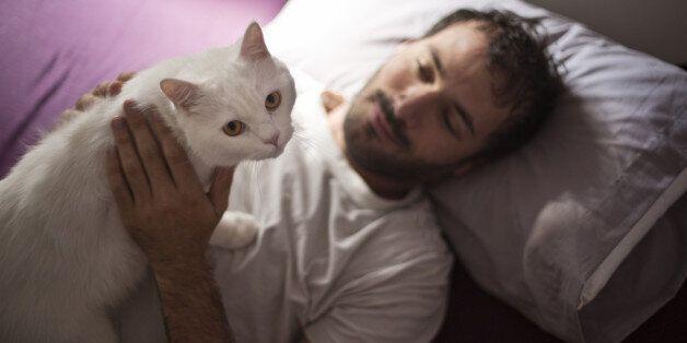 고양이를 키우는 사람은 정신분열증에 걸릴 가능성이 더