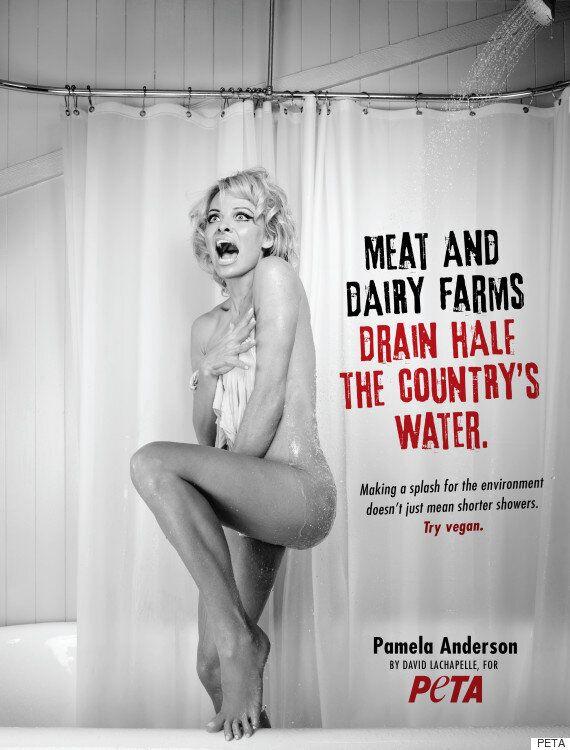 파멜라 앤더슨이 PETA를 위해 '싸이코'의 샤워실 장면을
