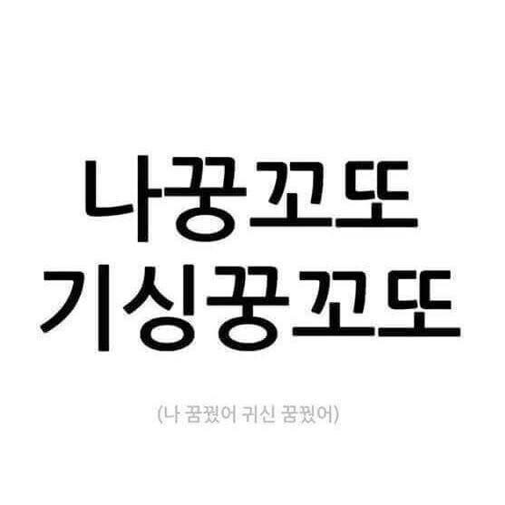 [업데이트]'나꿍꼬또 기싱꿍꼬또' 반응