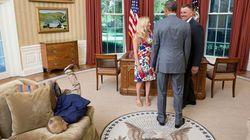 아이들은 왜 백악관에서 바닥에 머리를