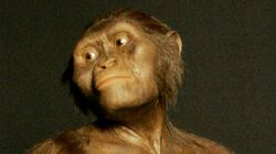 인류의 조상 '루시'와 동시대에 살았던 또다른 인류를