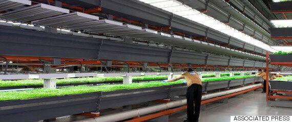 지구에 대변혁을 가져올 녹색기술