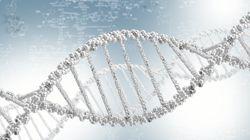 유전자 분석으로 9년 전 성폭행범을