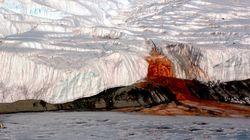 남극 '피의 폭포' 미스터리를