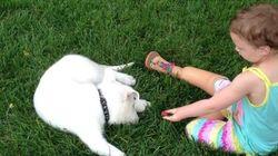 발이 없는 소녀, 발이 없는 개를 입양하다(사진,