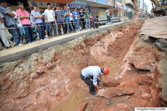 '대륙 공룡의 고향' 허위안市, 공룡알 43개 추가