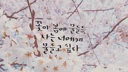 인스타그램의 '손글씨'