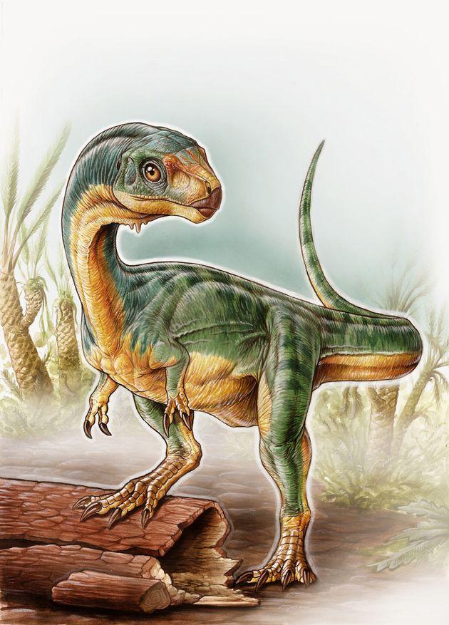 이 새롭게 발견된 공룡 칠레사우루스는 티라노사우루스의 채식주의자